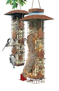 Perky Pet 336 Squirrel Be Gone Pesk Resistant Wild Bird Feeder