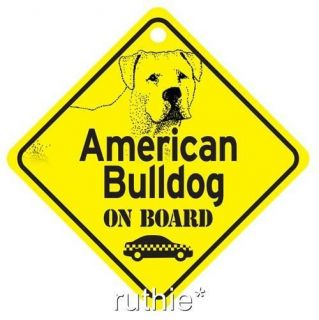Collectibles  Animals  Dogs  American Bulldog