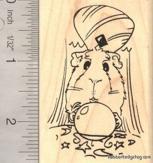 Guinea Pig with Crystal Ball, Fortune Teller, Magic J16304 WM