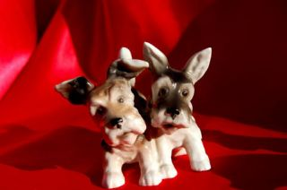 GErmany Budau Scottish terrier Norwich dog Skye Porcelain Aberdeen