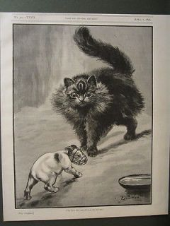LOUIS WAIN CAT WITH JACK RUSSELL TERRIER DOG ANTIQUE PRINT 1896