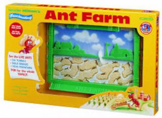 Original Ant Farm by Uncle Milton Live Insect Bug Sand Habitat School