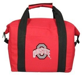 Ohio State Buckeyes Beer Soda Picnic Insulated Cooler Bag Tote