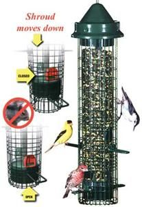 seed with the brome squirrel buster classic bird feeder voted best new