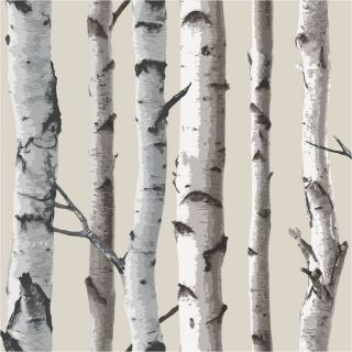 Beige Cream 31051 Birch Tree Forest Woods Fine Decor Wallpaper