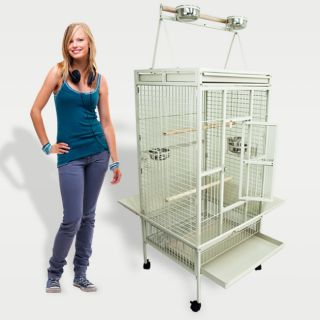 Bird Large White Cockatiel Parakeet Finch Cage Playtop Gym Perch Stand