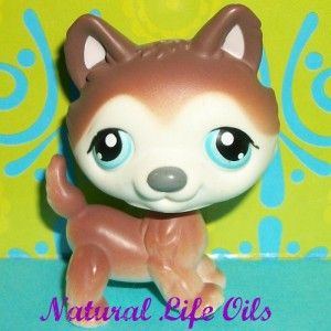 Littlest Pet Shop 68 Brown White Husky Polar Puppy Dog Blue Eyes F109