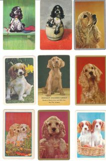 Playing Cards 22 Cocker Spaniels English Springer Dogs Single Swap Lot