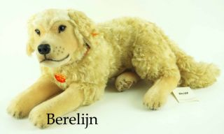 Steiff Hektor Golden Retriever Dog 031755 Retired