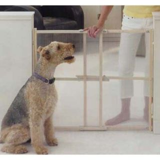 North States EXTRA TALL CLEARVIEW Dog Pet GATE XT