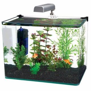 Penn Plax Radius 10 Gallon Glass Aquarium Kit