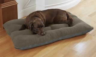 Memory Foam Futon Dog Bed / Large Dogs 70 100 Lbs., Gray,