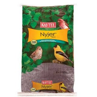 Thistle Seed Wild Bird Food