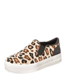 Jungle Leopard Print Calf Hair Sneaker   Ash