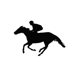 Horse Racing Vinyl Wall Decal (BlackEasy to apply You will get the instructionDimensions 22 inches wide x 35 inches long )